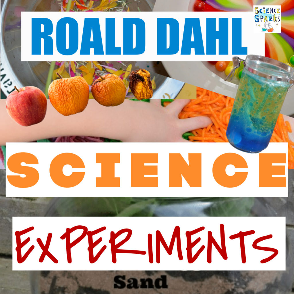 collage of lava lamps, rotting apples, a wormery and more ideas for science experiments based on Roald Dahl's books.