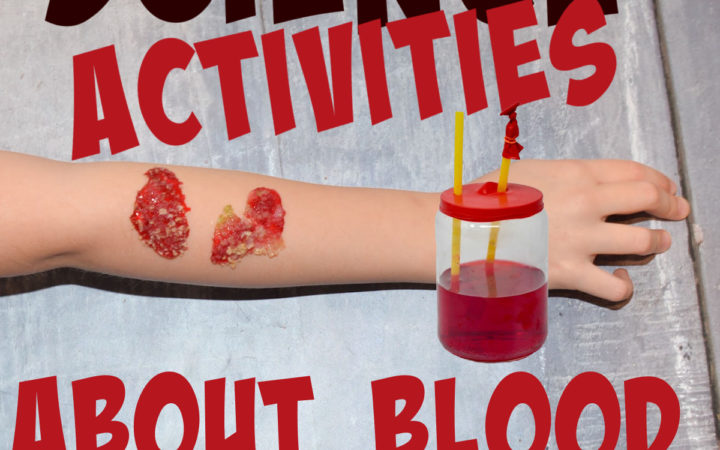 science activities for learning about blood