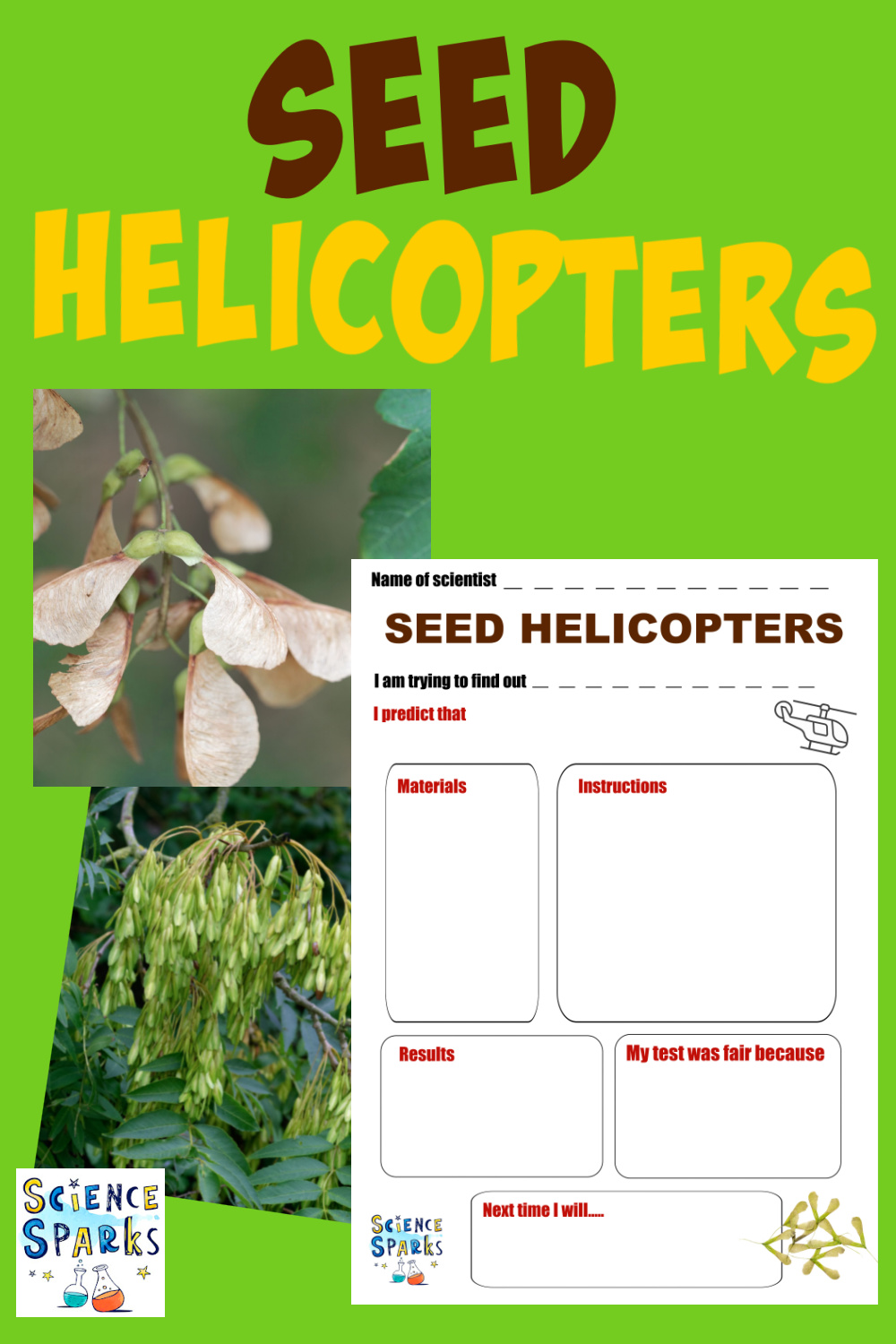 seed helicopter science activity - great autumn science for kids and perfect for learning about seed dispersal.