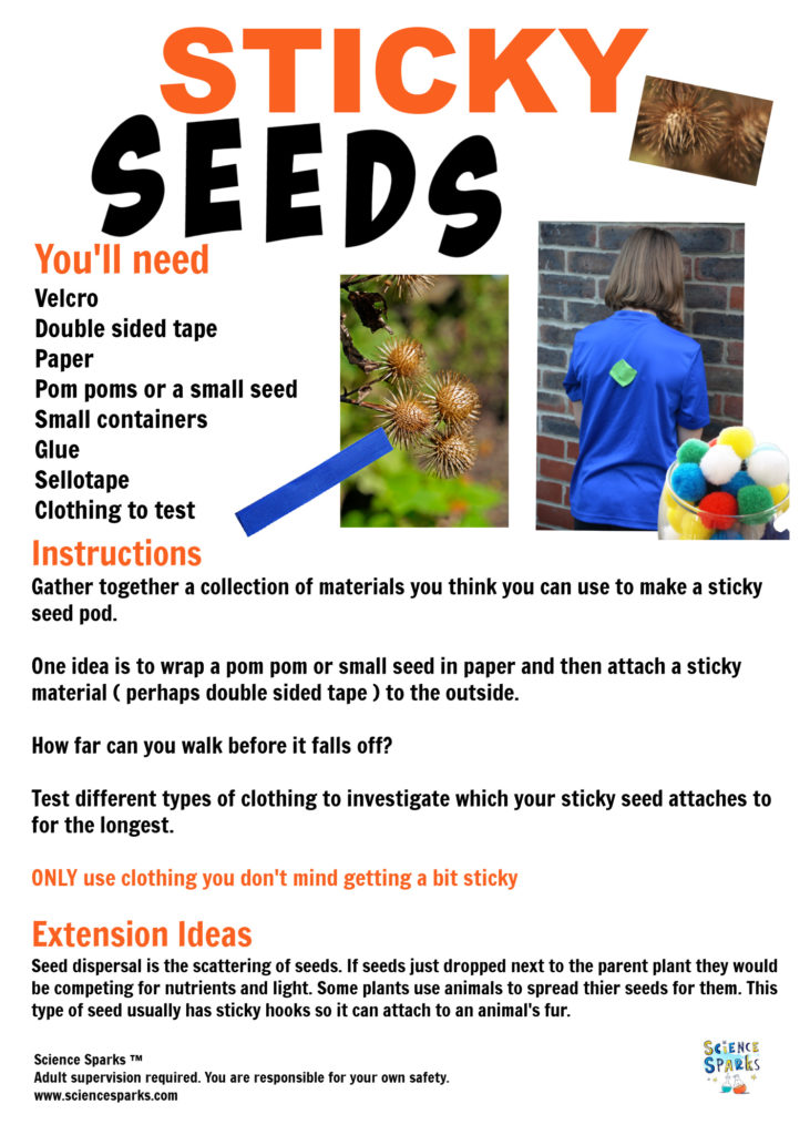 Instructions for a sticky seed pod science activity. Great for learning about seed dispersal