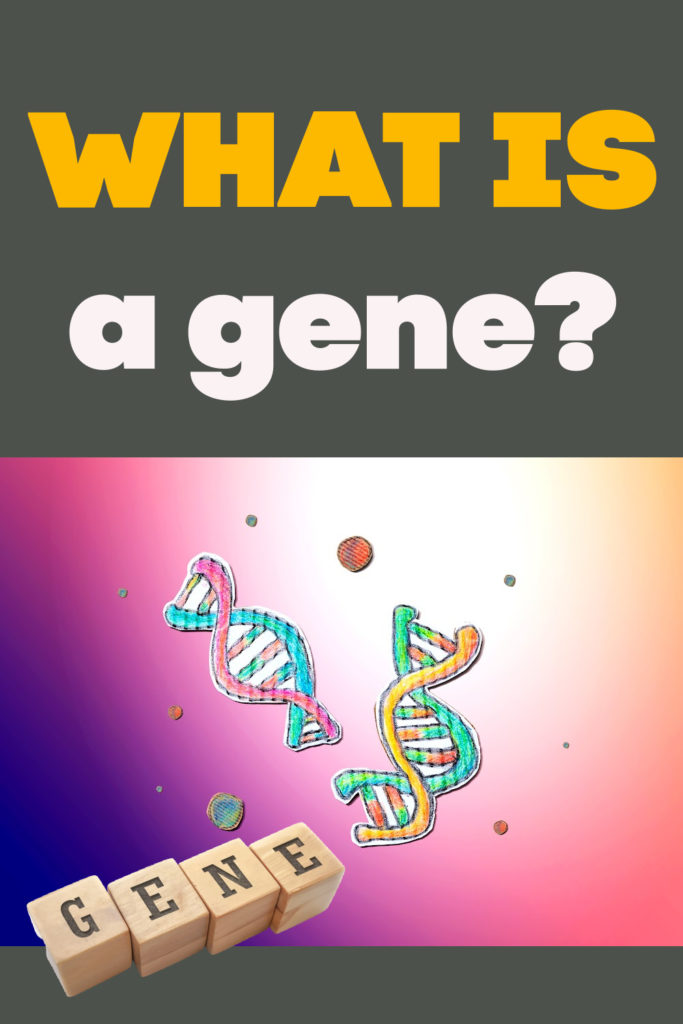 Image of cartoon DNA for learning about genes.
